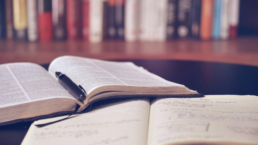 Bildung - Bücher